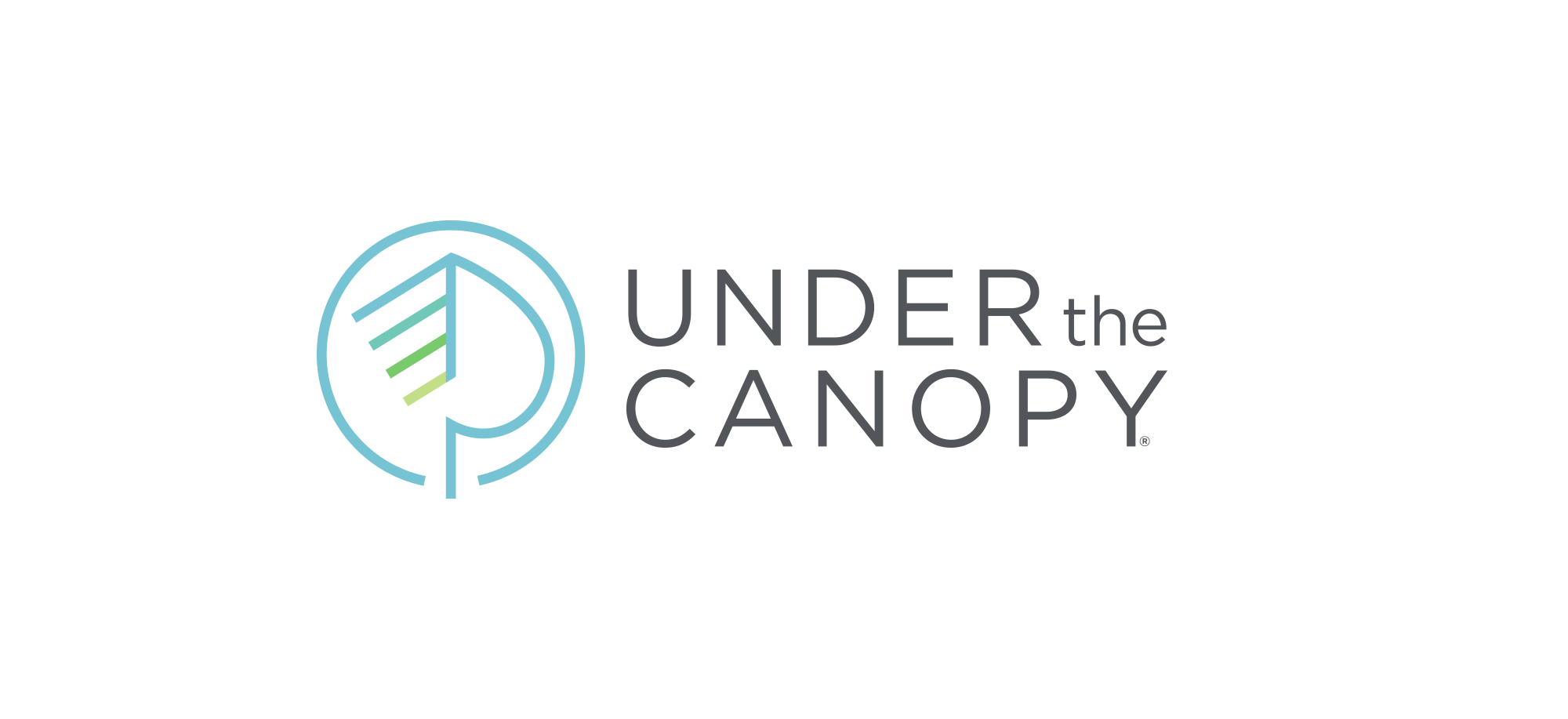 Under the Canopy sustainable fashion